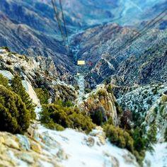 Caliparks : Mount San Jacinto State Park