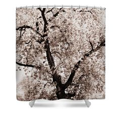 "Branches Shower Curtain for sale by Inspired Arts.  This shower curtain is made from 100% polyester fabric and includes 12 holes at the top of the curtain for simple hanging.  The total dimensions of the shower curtain are 71"" wide x 74"" tall."