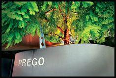 Prego - wonderful Italian cuisine and great atmosphere, my pick calamari - Ponsonby Rd **** Calamari, Auckland, Places To Eat, Explore, Dining, Food, Octopus, Exploring