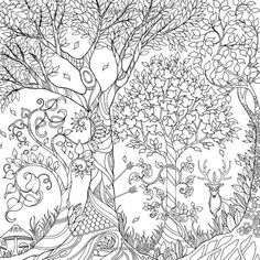 Image Result For CASTLE LEAVES Johanna Basford To Colour In