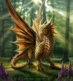 This young dragon takes a walk in the enchanted forest for the first time, enjoying the beauty of late summer sunlight.  Artist Anne Stokes