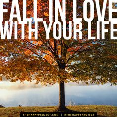 Remember to fall in love with your life…every minute of it.