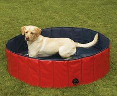 The Guardian Gear dog pool is made of 100% tough PVC, is easy to fill and empty, and folds up into practically nothin' for easy storage and transport.dogpool @Jakes Dog House