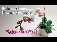 Rainbow Loom Flowers Series: Phalaenopsis Plant tutorial by PG's Loomacy.( This is a seriously advanced design. PG always has a lot of detail, but all the hard work pays of when you have the final result.~RMK)