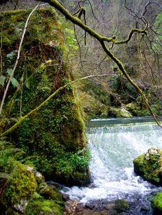 aqui nace el rio Puron, bueno, y la imprenta del ser humano