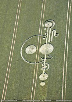 Lucy Pringle's Crop Circle Photograph Library : The Sanctuary - nr Avebury, Wiltshire, 2008