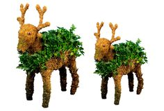 Pair of Ivy Reindeer, Small & Large   FreshTopiary $139.00 Even Scrooge would find these Christmas reindeer irresistible. They're handcrafted and covered in natural moss, with English ivy carefully attached to the mossy surface, where it will continue to grow.