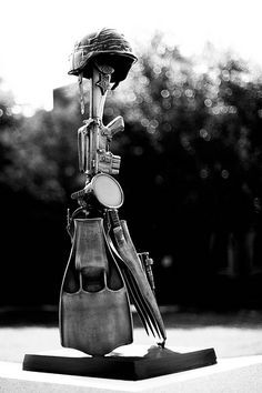 Lt. Michael Patrick Murphy ~ Navy Seal ~ Medal of Honor.   I took this picture of Murphy's memorial a while back.  When i was editing the image i found that the high contrast black and white felt more fitting. It really is a beautiful memorial.