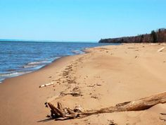 I live a few blocks from this beach, yeah... (From Pinner). I love the beaches and amazing driftwood Lake Superior's sometimes rough waters can distorts and wash up on shore. Paula