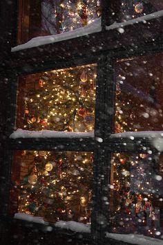 those christmas lights keep shining on