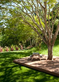 91 Best Deck Around Trees Images In 2019 Building A