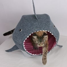 Great White Shark Cat Ball Kitty Bed - might have to get for Bailey