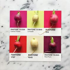 Designer Pairs Different Foods with Their Pantone Swatch Colours - BlazePress