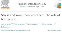 Chronic stress is associated with the accelerated aging of the immune system and represents a potent risk factor for the development and progression o… Chronic Stress, Immune System, Omega, Science, Science Comics