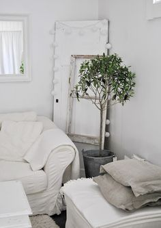 Olive tree ~ whiteness Loving the white door against the wall