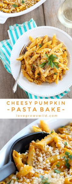 Pumpkin is not just for dessert anymore! This Cheesy Pumpkin Pasta Bake is super creamy and SO delicious!   LoveGrowsWild.com