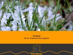 przysłowia polskie na miesiąc marzec - www.concept4u.eu