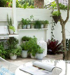 potten-tuin-planten
