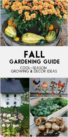 Summer is over and fall gardening season begins! There are plenty of flowers that bloom in the fall garden and many perennials and bulbs to planted for spring blooms. This is also an ideal time for growing cold-loving vegetable and herbs. And be sure to celebrate the beauty of the season with some fabulous garden art using pumpkins, corn stalks, wreaths, flags, sedums, mums, and more.