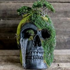 Pin by Deborah Caviness on skulls (With images) Fall Halloween, Halloween Crafts, Hm Deco, Skull Crafts, Diy And Crafts, Arts And Crafts, Goth Home Decor, Gothic House, Art Plastique