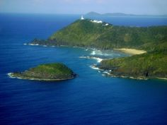 Image result for east cape NZ