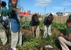 Find out how to inspire children to learn about culture and caring for the environment through project-based learning.