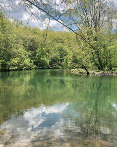 🌿🌱🍃🌊 // Green, Lush, Calm Lush, Universe, Calm, River, Green, Outdoor, Outdoors, Cosmos, Outdoor Games