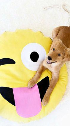 DIY Emoji Dog Bed