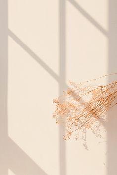 Neutral Wallpaper, Rose Gold Wallpaper, Flower Wallpaper, Iphone Wallpaper Tumblr Aesthetic, Aesthetic Pastel Wallpaper, Aesthetic Wallpapers, Flower Background Images, Flower Backgrounds, Homescreen Wallpaper