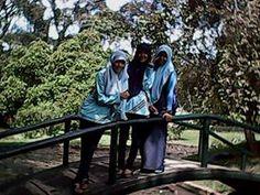 _23j#Tadaburalam_jembatan_KebunRayaPurwodadi_malang_23juni2013 :*