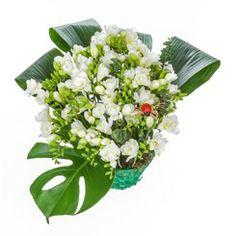 Ceva de primavara pe http://www.floricudrag.ro/