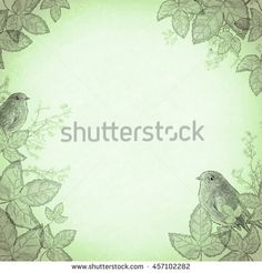 Birds in foliage, green. An ancient illustration sketch, in vintage style. Retro background, basis for design or text.