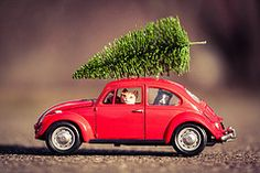 VW Christmas Tree (Kilkennycat) Tags: christmas red cats tree vw canon bug volkswagen toy toys model funny beetle kitty merrychristmas 500d kilkennycat t1i ryanconners 100mm28l