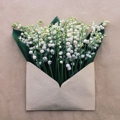 Sending Letters of Beauty with flowers Innovative bouquet idea Art Floral, Deco Floral, My Flower, Flower Art, Beautiful Flowers, Art Flowers, Flower Crafts, White Flowers, Bloom