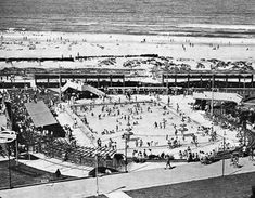 Port Elizabeth of Yore: King's Beach - The Casual Observer Creature Of Habit, Us Swimming, Port Elizabeth, Fast Cars, South Africa, Om, Cape, Hunting, Father