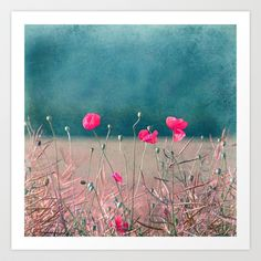 Buy pink poppy by Claudia Drossert as a high quality Art Print. Worldwide shipping available at Society6.com. Just one of millions of products available.