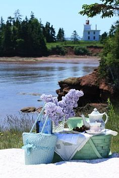 Oh what do you do in the summertime....picnics by the lake