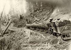 Saldern's Logging Road, 13 1/2 Percent Grade - c. 1898