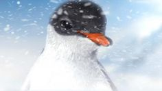 Meet the star of our newest attraction, Antarctica: Empire of the Penguin - Puck!