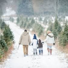 The Best Christmas Tree Farm in Every State for 2020 - Best Christmas Tree Farms #barnpros #barns #barn #prefabbarns #barnhomes #barnkits #barnswithapartments #barnbuilding #barnhouses #barnkit Prefab Barns, Barn Kits, Cool Christmas Trees, Couple Photos, Photography, Farms, Outdoor, Couple Shots, Outdoors