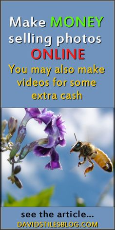MAKE MONEY SELLING PHOTOS ONLINE. WORK FROM HOME JOB. From: DavidStilesBlog.com