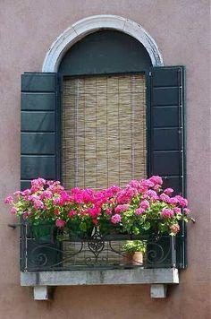 Pink geranium window box*