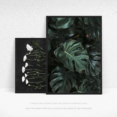 Whether you're looking to add to your tropical theme, or create a stunning gallery wall, this printable Monstera leaf Nordic wall print has you covered. In beautiful shades of green, this poster design has stunning contrast to give real depth to the print. If you're looking for a gallery wall set, some of our complementary prints include this photographic flower print http://etsy.me/2y37Hij, and this Fern illustration print http://etsy.me/2yoMBHA.