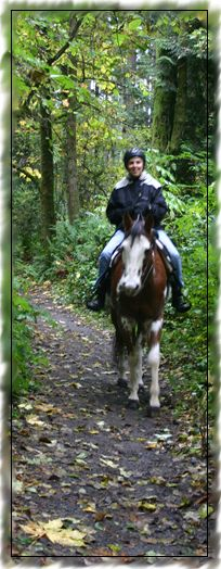 @Yoh Satoh   -  Here is the most popular horse riding trail area in Western Washington - Bridle Trails State Park, Kirkland.