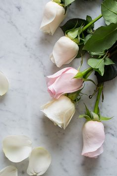 Sweet Rose Champagne Simple Syrup - Ingredients: 3 1/2 cups superfine sugar petals from 6 large roses, gently massaged and torn Directions: 1. Pour 4 cups water and...