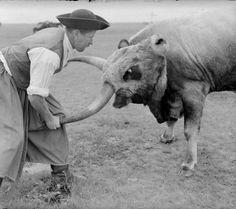 From Hortobágy, NHA Hungary History, Central Europe, Folk Music, Roman Empire, Farm Life, Homeland, Romania, Budapest, Old Photos