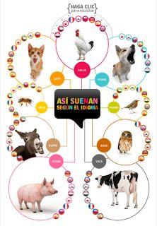 Actividades para Educación Infantil: Voces animales ESL