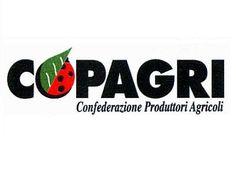 Copagri Puglia replica all'assessore Di Gioia - Foglie TV