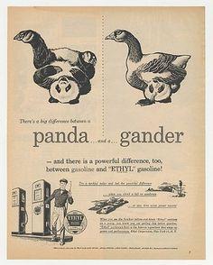 1951 Panda, Gander Difference Ethyl Gasoline Ad   eBay