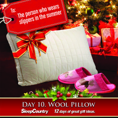 Day 10 - Wool Pillow